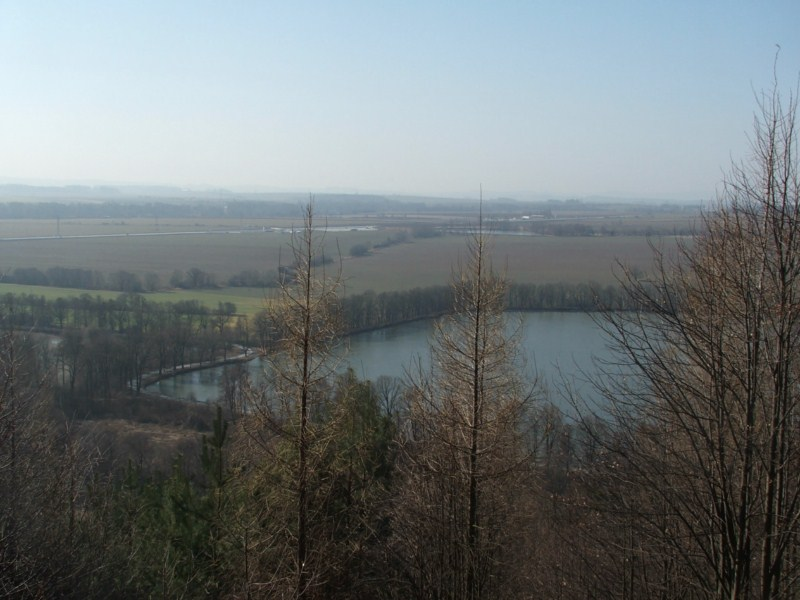 brana-2